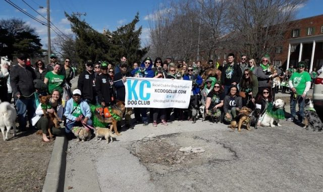 2019 Brookside St. Patrick's Day Parade - KC Dog Club